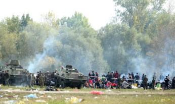 Migrantski center Brežice 2015 - migranti so ga nailno požgali