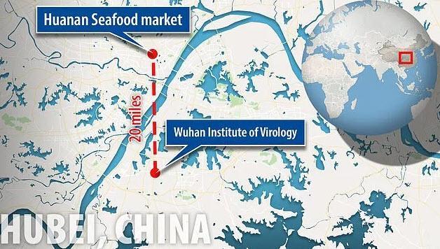 Wuhan laboratorij